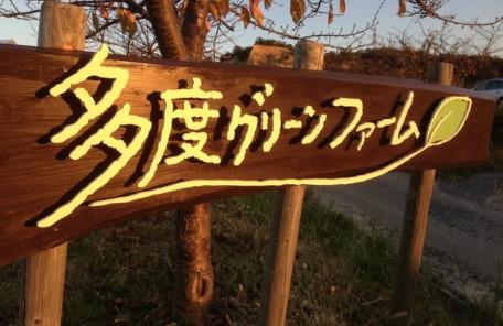 愛知、岐阜、三重、名古屋女性専門結婚相談所ブライダルサロンZEROwoman多度グリーンファーム4